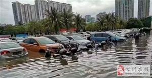 茂名2次大暴雨,造成1603辆车报损,报损金额近1500万元