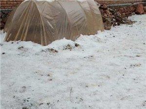 刚刚,武都池坝,安化、甘泉等乡镇遭遇冰雹