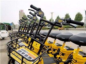 菏泽太阳城也有松果共享电单车啦!首单免费骑!