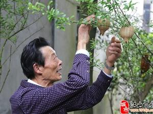 【见证・江山力量】竹编大师王振富:人就是要做有意义的事
