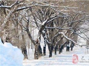 苏城巴彦摄影之苏城雪-安志伟