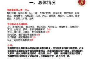 江夏摄影家协会2019年第?#40644;?#25668;影双月赛作品评选结果及评析