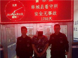阜城警方侦破一起保险诈骗案,夫妻双双进牢监!