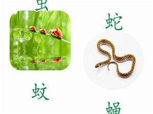 中国教学网五一大奉送>>>3-12岁必用电子书、图书直降80%