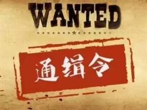 ;泰安警方新发通缉令,对以下8名在逃人员予以悬赏通缉。