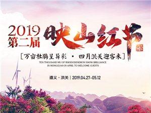 """火爆五一的遵义洪关""""映山红节"""" 牛王争霸赛、武林大会等你来"""