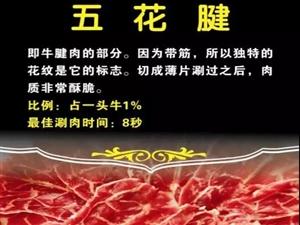 尚臻�潮汕牛肉火��您免�M吃牛肉!�S都人�s�o�M�了!
