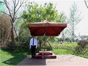 今日起!红玺公园正式对外开放,潢川人又多了一个休闲娱乐的好去处..