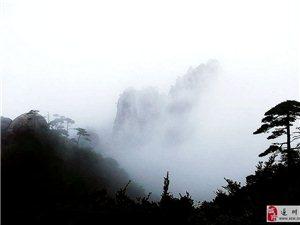 """【三省四月游】""""泰然自若""""醉三清"""