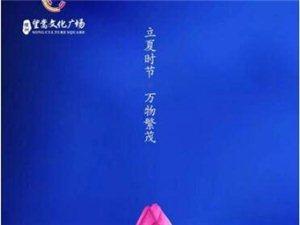 【绿洲・望嵩文化广场】立夏