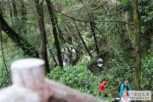 假期之后去九皇山体验了大秋千