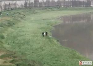 盐亭一女子弥江河边跳河,年纪轻轻为哪般!