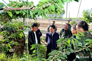 看项目、定规划、摸家底……市委书记庞庆波驻村开展帮扶工作