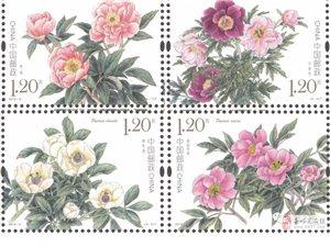 5月11日将发行《芍药》特种邮票1套4枚