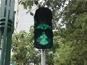 武都:共新增24处丁字路口及不规则路口人行横道红绿灯设施