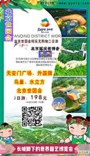 【高邑独立成图丨纯玩丨无购物】北京世园会二日游