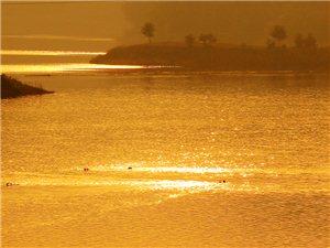 梅山湖.金色的早晨