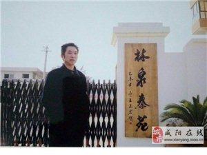 现代实力派书法家:王志宏