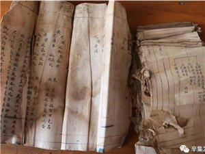 辛集发现580年家族族谱