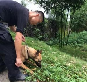 开化县公安局警犬基地积极参与搜救,家属献锦旗感谢