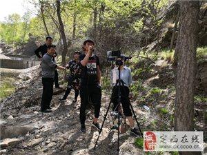 瞧一下,今年四月八李家峡景区都有啥活动