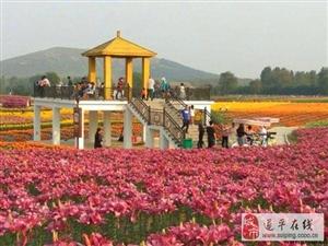 河南嵖岈山三和旅拍:一个神奇秀美的婚纱摄影基地