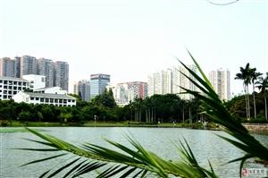 深大文山湖
