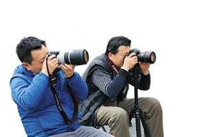 丰都文化馆将举办2019年第一期摄影培训班,有兴趣的可参加。