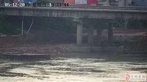 快讯:网传有关化州自来水取水口附近出现死猪问题情况说明