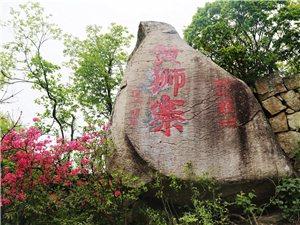 大美金寨之黄狮寨上映山红