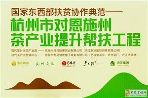 第三届中国国际茶叶博览会恩施展区