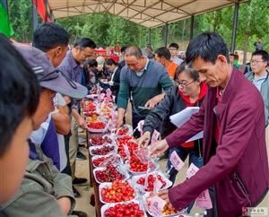 黄山铺镇朴城峪村举办樱桃节