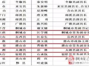 省里这份责任人名单公布,桐城的是…