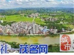 化州合江:县域副中心亮点纷呈!你关心的都在这里...