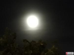 月出于黄海之上