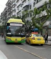 当丰都的公交车和出租车上演全武行的时候。。。。