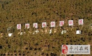 平川区完成生态扶贫退耕还林4.4万亩