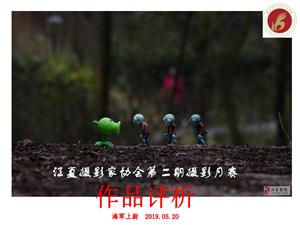 江夏摄影家协会2019年第二期摄影月赛作品评析