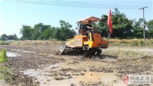 """""""全国主要农作物生产全程机械化示范市""""创建工作在桐启动"""
