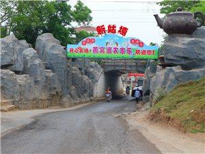 南谯区的生态园