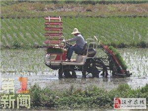 汉中:数千农机下田间  助力夏收夏种
