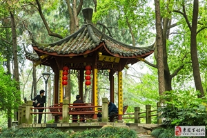 杭州朝晖文化公园