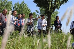 县政协组织调研我县乡村生态环境保护暨二十四