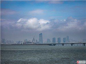 《珠海桥缘》