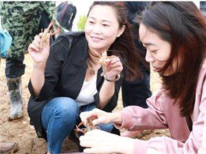 【视频】卢琴:一心专注养殖小龙虾,携手村民走上致富路