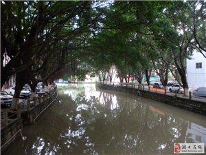 雨中环溪四社