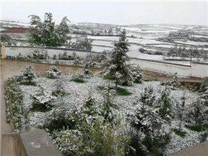任性的天气!五月飞雪!陇南这个地方下雪了(视频+图片)
