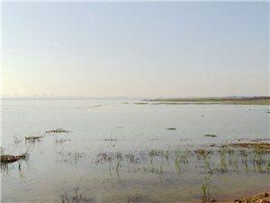 滁州大明湖风光