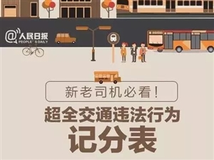 新老司机必看:超全交通违法行为记分表
