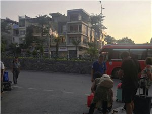 环保老太杨素珍越南旅游捡垃圾